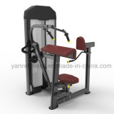 De nieuwe Uitbreiding van de Triceps van de Apparatuur van de Gymnastiek van het Ontwerp Commerciële