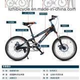 Gebirgsfahrrad für Kursteilnehmer-/Straßen-Fahrrad/Fahrrad-Kursteilnehmer in populärem