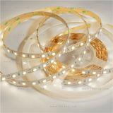 Blanco caliente SMD 5050 60LEDs luz de tira con CE y RoHS