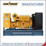 generador importado del gas natural de 250kw Doosan (motor) con el radiador doméstico
