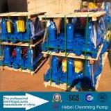 Circulación eléctrica Bomba de agua Bomba centrífuga de riego de fuego