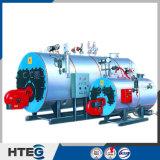Chaudière au fuel complètement automatique de série de Wns de rendement thermique de la Chine