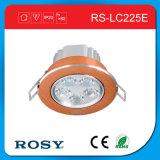 Deckenleuchte der hohe Helligkeits-energiesparende Werbungs-LED