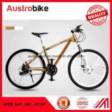 Gebirgsfahrrad-Kind-Fahrrad scherzt Fahrrad-Gebirgsfahrrad der BMX Kind-MTB