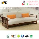 Sofá de cuero seccional de la sala de estar moderna (HCS02)