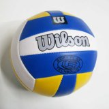 Volleyball (XCF071107-011)