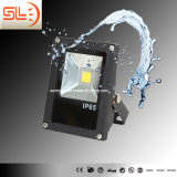 세륨 RoHS를 가진 새로운 Design 10W LED Floodlight