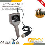 Farmscan M30 Portable B / W Veterinary Ultrasound pour les grands animaux