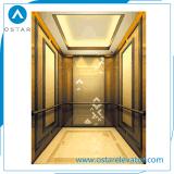 Decorationed 아름다운 오두막을%s 가진 홈에 의하여 사용되는 엘리베이터 가격