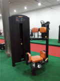 Machine commerciale de torse de Lifefitness Totary (XF19)