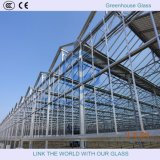 4-6mmtempered vidrio para invernadero con Ce & CCC