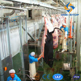 CE Standard Cow Slaughter Line for Cattle Abattoir