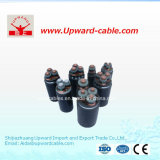 Câbles d'alimentation électriques isolés par XLPE de faisceau de PVC 4
