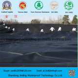 HDPE Geomembrane para a retenção do desperdício contínuo