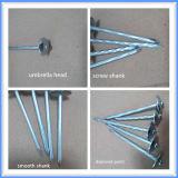 電流を通される釘に傘ヘッドによって屋根を付ける
