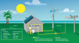 세륨, TUV와 CQC 증명서를 가진 200W 단청 태양 전지판 중국제