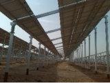 専門のカスタムAgri太陽土台システム