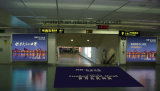 Rectángulo ligero publicitario montado en la pared de interior de la visualización del aeropuerto