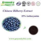 25%のアントシアニンが付いているGreenskyのBilberryのフルーツのエキス