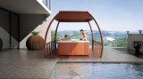 STATION THERMALE extérieure de baquet de massage de conception magnifique de Monalisa (M-3367)