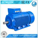ケイ素鋼鉄シートの固定子との機械のためのY3電気モーター