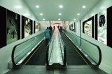 Caminata móvil de Shandong Fjzy con tecnología japonesa