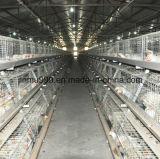 Gaiola automática da galinha do equipamento das aves domésticas da bateria