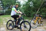 1000ワットの脂肪質のタイヤの電気バイクのバイクの電気か電気自転車かEbike