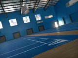De binnen Sporten die van pvc voor de Hof van het Badminton vloeren