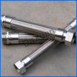 Fornecedor superior personalizado da boa qualidade com a mangueira inoxidável Nuts do metal 304 flexível