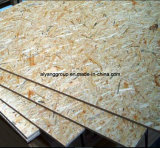 Ce/SGS Certificate를 가진 싼 Price Waterproof OSB/OSB