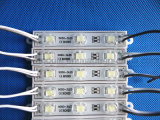 5050 lente Waterproof 3LED Module High Light DC12V