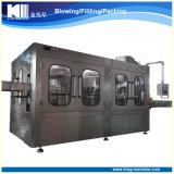 Máquina plástica de la bebida de la máquina de rellenar del agua de botella