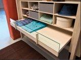 Wardrobe/armário de madeira ajustados da mobília do quarto