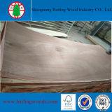 madera contrachapada del cedro de lápiz de la base de la madera dura de 3m m