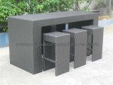 Silla usada al aire libre de la barra de los muebles del jardín de la rota del PE (FP0043)