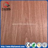 le placage en bois conçu décoratif de 3mm a fait face au contre-plaqué de fantaisie de Gujan