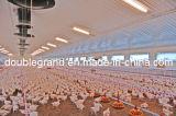 Il pollame d'acciaio prefabbricato alloggia, case del pollo con strumentazione (PCH-7)