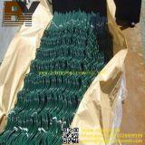 Met een laag bedekt pvc of de Elektro Gegalvaniseerde Spiraalvormige Stokken van de Tomaat