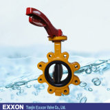 Lugged Butterfly Valve in Cast Iron with Handle (LT71X)
