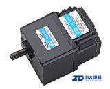 ZD DC sin escobillas del motor de engranajes (BLDC Motor)