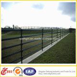 Ferro saldato dell'azienda agricola ornamentale che recinta rete fissa di alluminio
