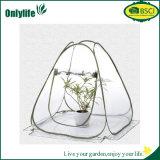 Serra di plastica del giardino agricolo di Onlylife con la pellicola trasparente