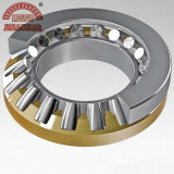 Precision stable Taper Roller Bearing avec OIN Certificated (218248/10)