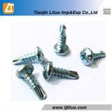 Vis Drilling d'individu de tête de carter de DIN7504n galvanisée