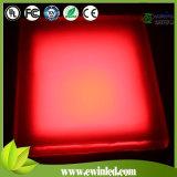거리를 위해 또는 사각 또는 보도 또는 정원 걷는 단 하나 색깔 LED 벽돌 점화
