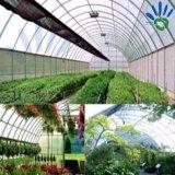 Couverture non-tissée d'usine d'agriculture de pp avec la couverture UV de jardin de traitement