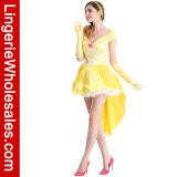 Kostuum van het Sprookje van de Schoonheid van de Prinses van de Partij van Halloween van vrouwen het Betoverende