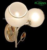 Fabrik-Preis-Eisen-weiße Wand-Glaslampe/Licht (6276/2WA)