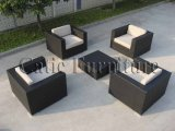 Osier de patio de jardin/sofa de rotin réglé - meubles extérieurs (GS155-M)